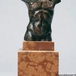 Rapace statua in bronzo