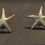 stella piccol