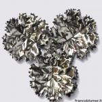 Tris geraneo argento sbalzato e cesellato